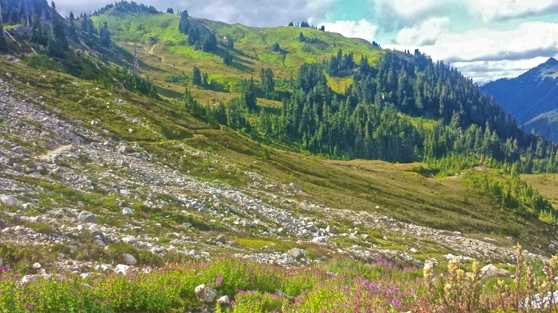 The view from a water source, looking back at the Pacific Crest Trail in Washington