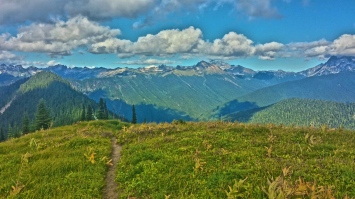 The Pacific Crest Trail Continues onward in Washington. Only a few days more until the Trail is complete.