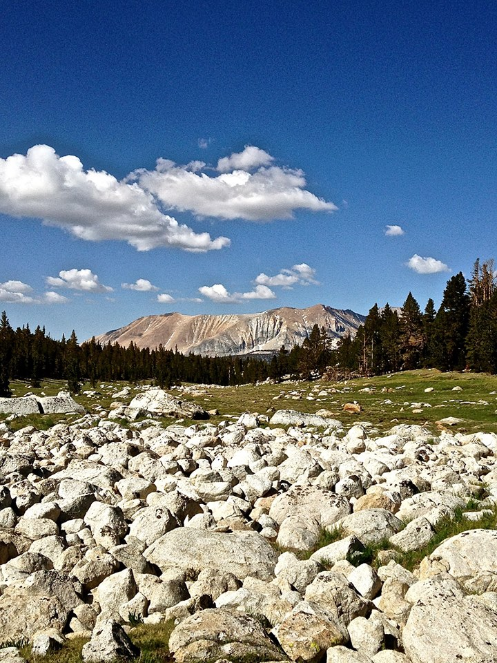 Sweeping Meadows on the Pacific Crest Trail/John Muir Trail. (CRED: Nicole Frias)