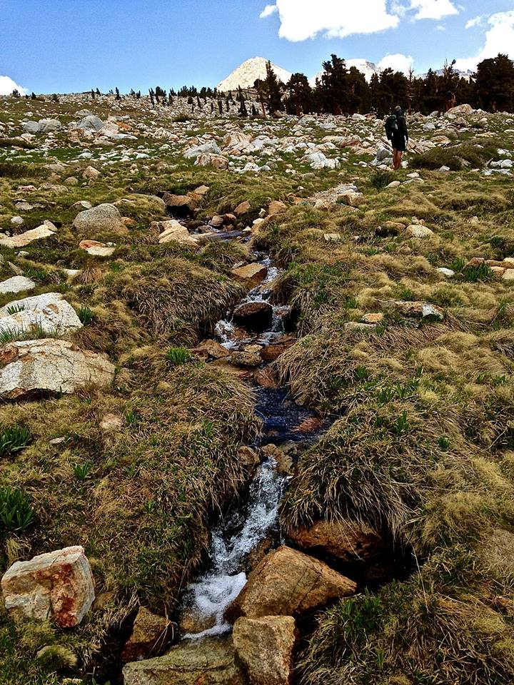 Mountain Stream on the Pacific Crest Trail/John Muir Trail.