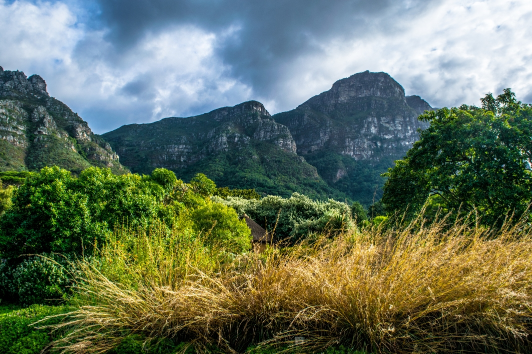 The Kirstenbosch National Botanical Gardens offer splendid view of Table Mountain. The Gardens are world class, but try to avoid them in the fall as the flora is not blooming.