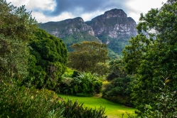 More from the Kirstenbosch National Botanical Garden and the lovely view of Table Mountain.