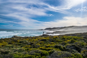 A misty beach on the Cape Point Peninsula. It's tempting blue water, and fine, white sand, belie the dangers that lurk in the beauty. Unknown riptides, Great White Sharks, and Portuguese Man-o-War jellyfish call this place home.