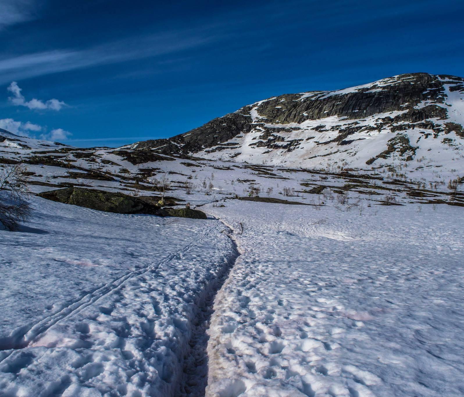 The trail through the Maglitopp.
