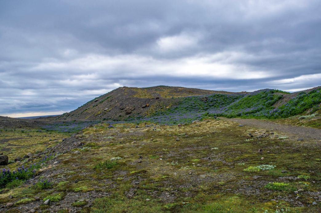 Near the Skaftafell Glacier.