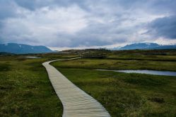Boardwalks at Thinfellir National Park