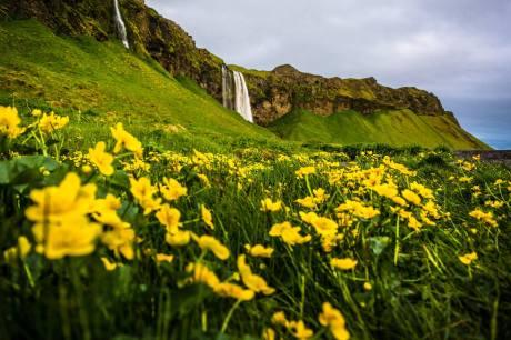 Iceland's South Coast.